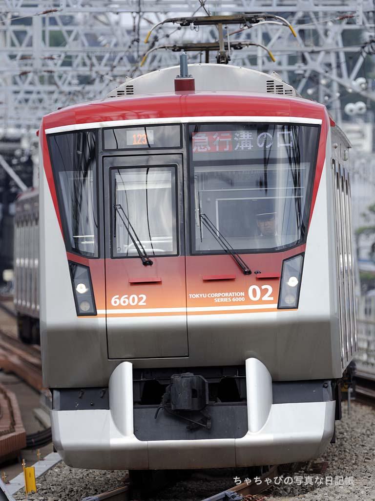 6602F