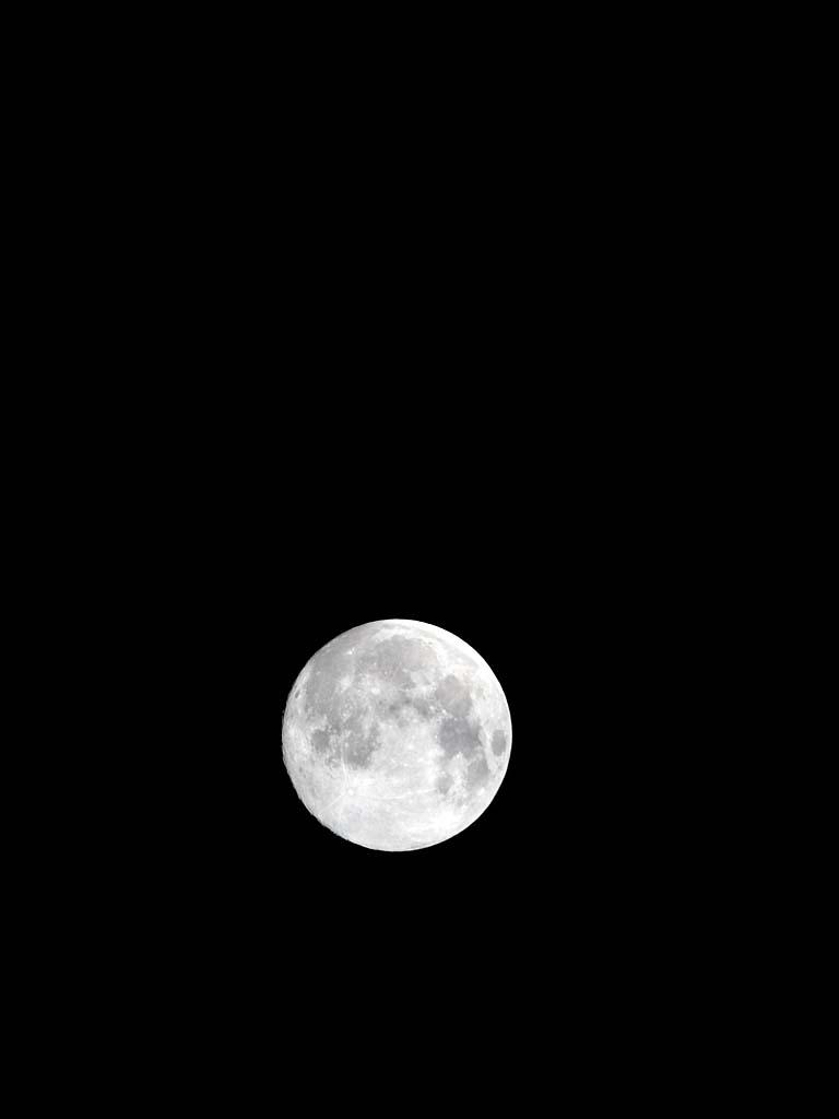 十五夜 お月様