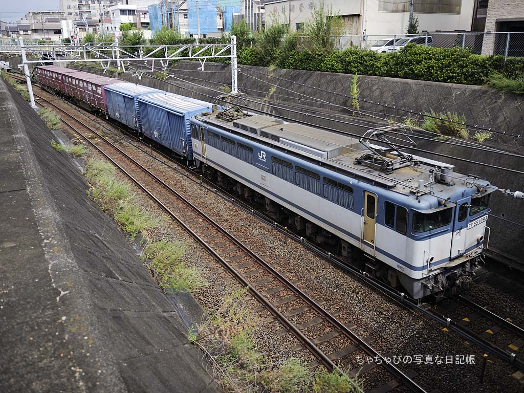 EF65 1093号