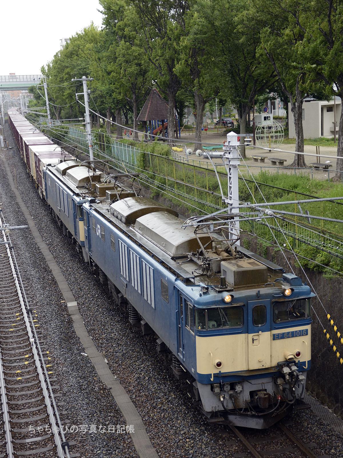 81レ EF64 1016 + EF64 1006