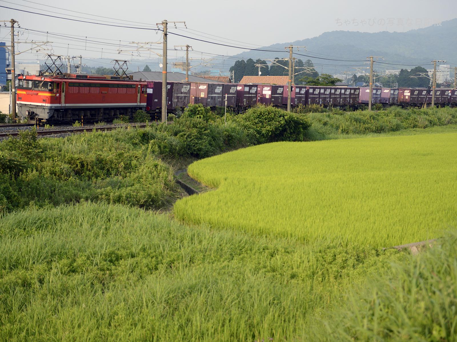 5080レ、EF67-104 八本松駅~西条駅