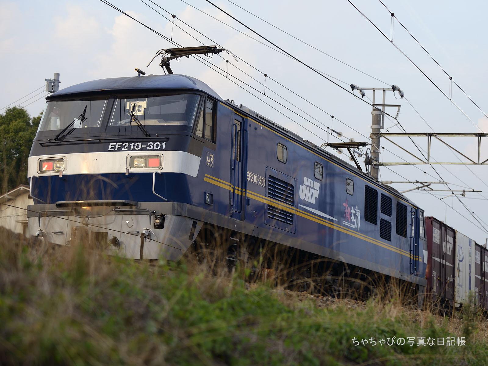 5058レ、EF210-301 八本松駅~西条駅