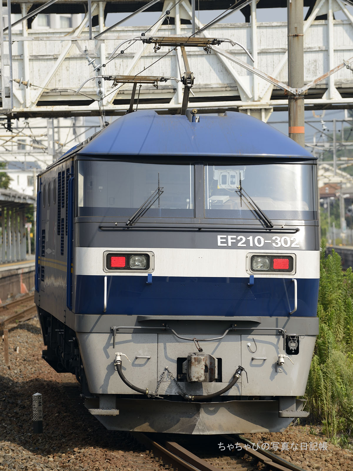 単585レ、EF210-302 向洋駅