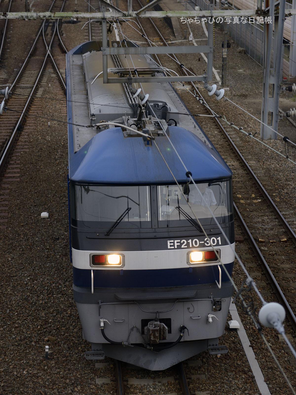 単567レ、EF210-301 西条駅~八本松駅