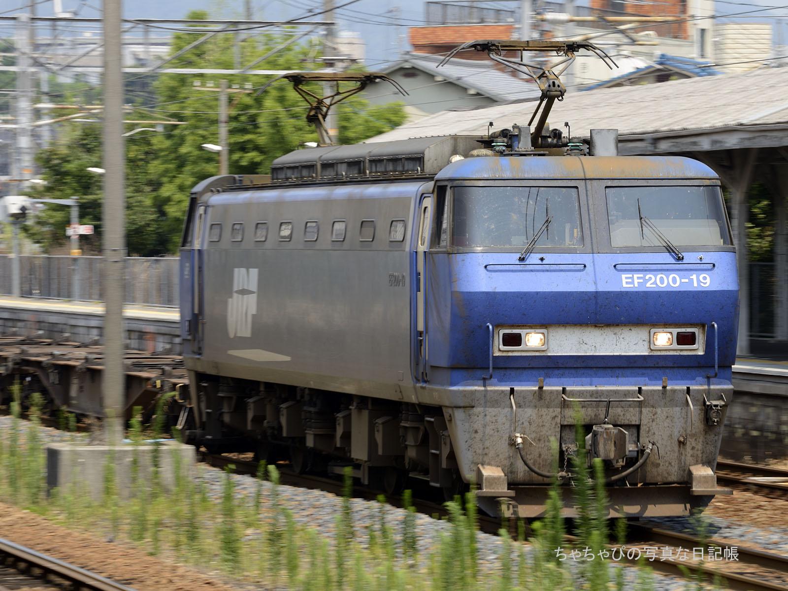8056レ、EF200-19 向洋駅
