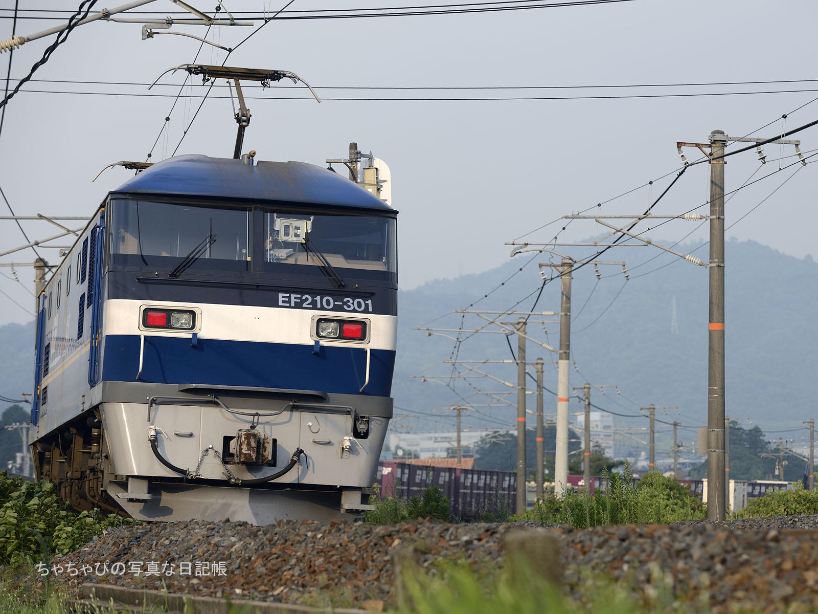 5080レ、EF210-301 八本松駅~西条駅