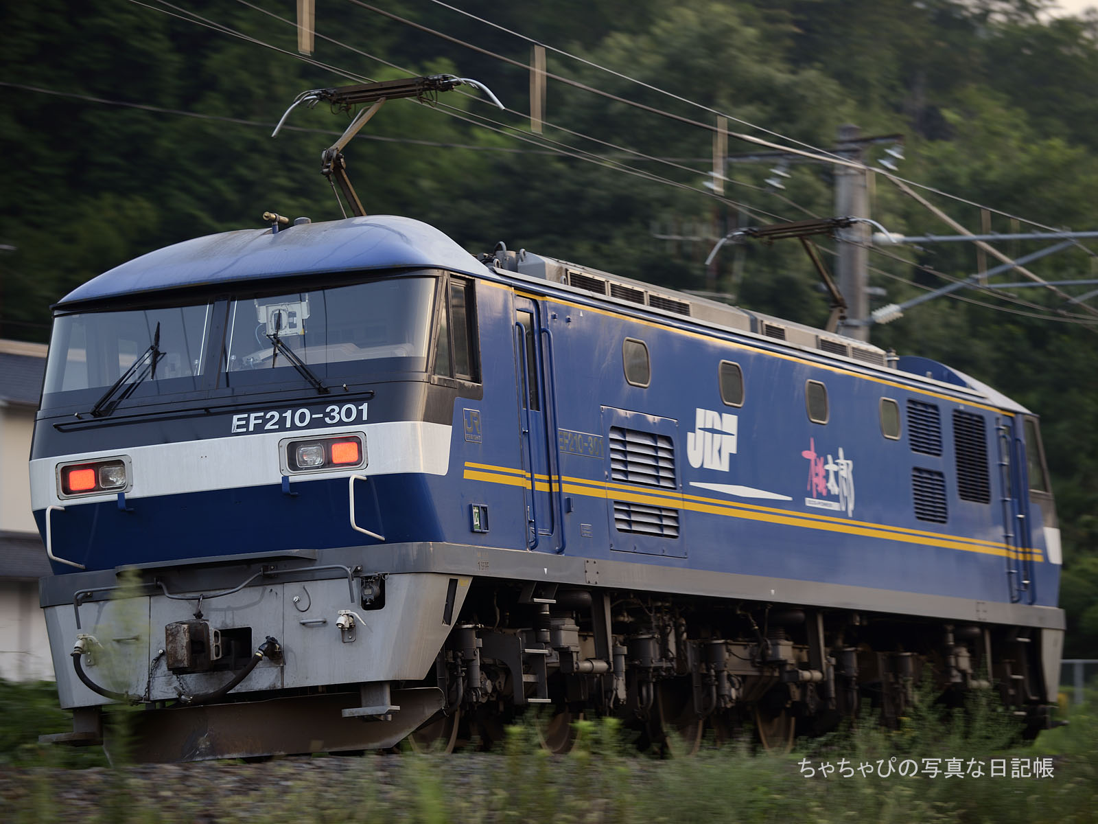 単597レ、EF210-301 西条駅~八本松駅