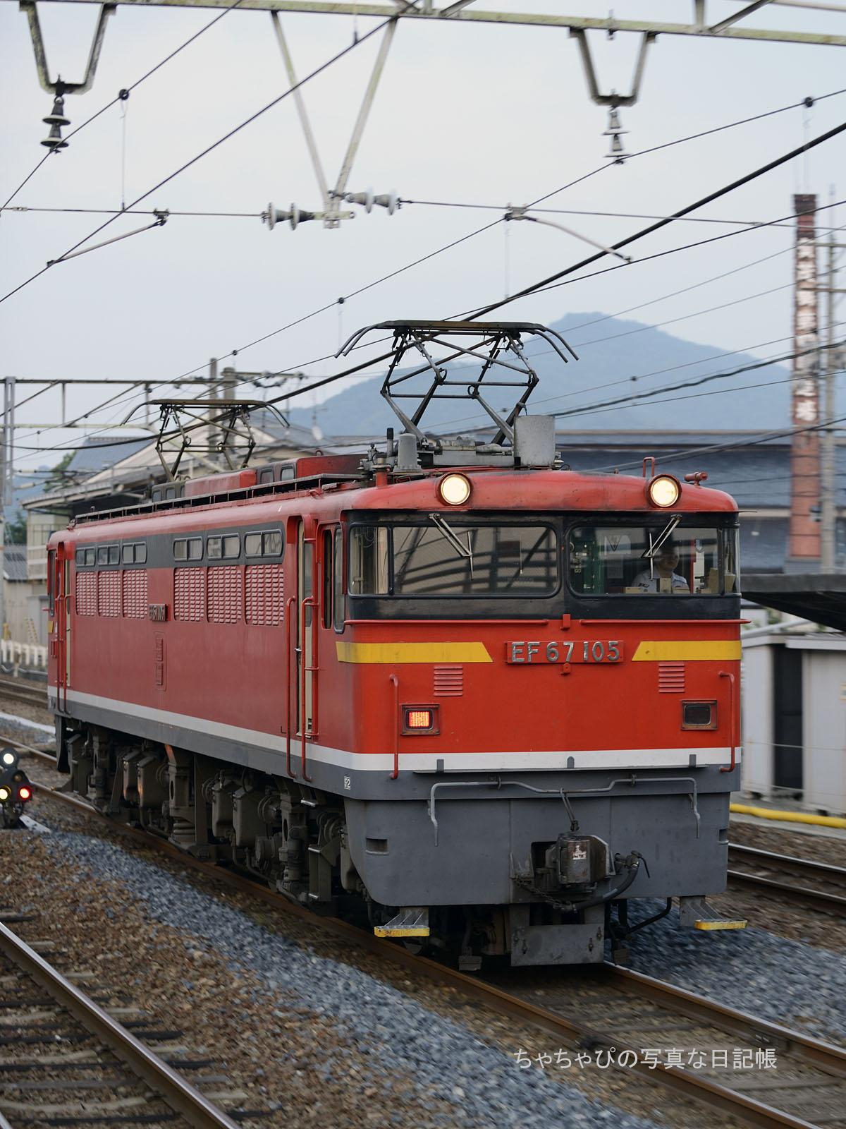 単599レ、EF67-105 西条駅