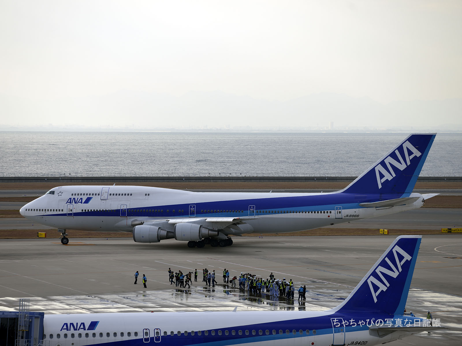 ANA B747-400D 里帰りフライト