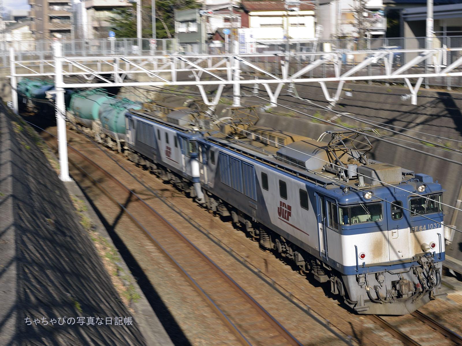 EF64 1037+EF64 1003