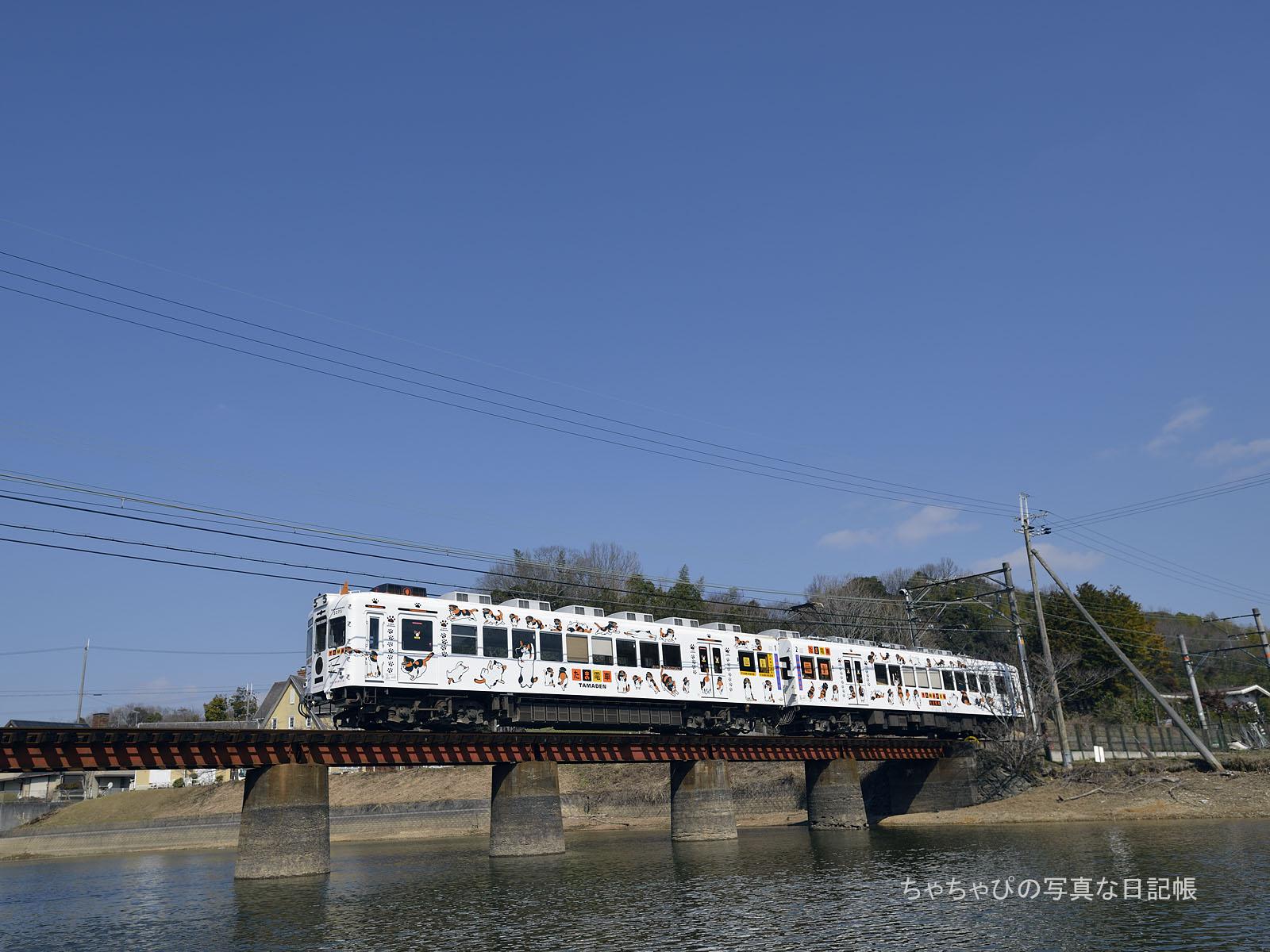 たま電車 TAMADEN
