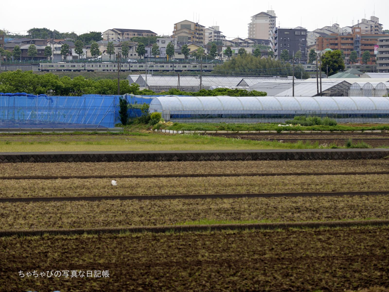 横浜線205系 H17編成